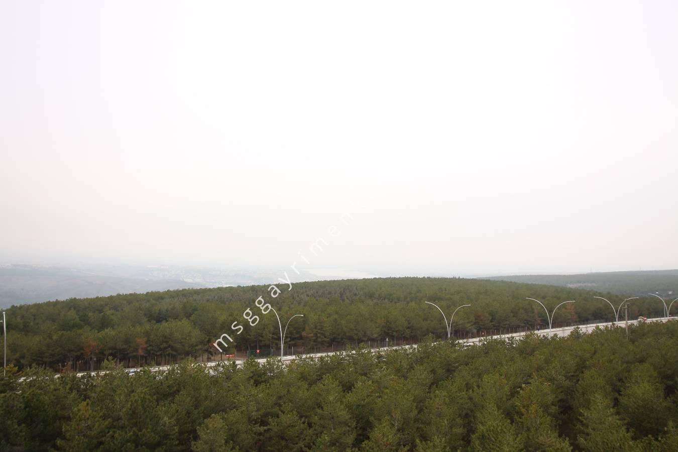 Oran Kiralık 4+1 - Orman Manzaralı